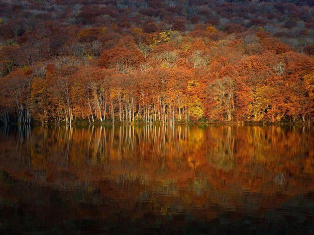 Autumn in Aomori - Nat Geo
